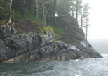 Gordon group island north of Port Hardy